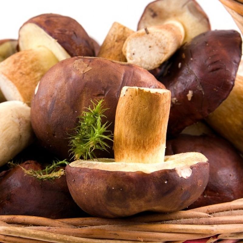 Calorii pentru ciuperci umplute